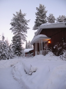 Talvea03_pieni
