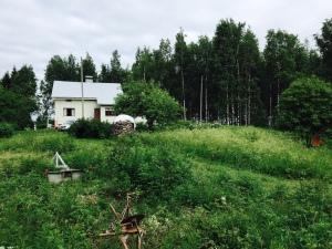 Seiväsvaara_talo